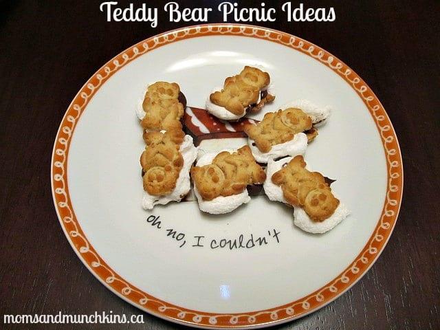 Teddy Bear Picnic Ideas - Smores