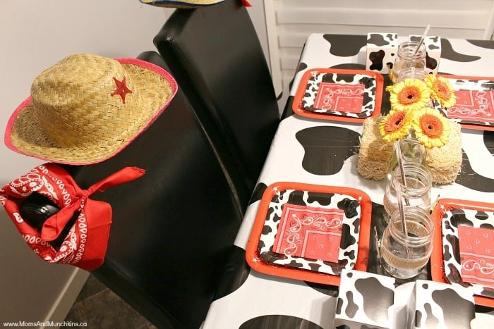 Cowboy and Cowgirl Party
