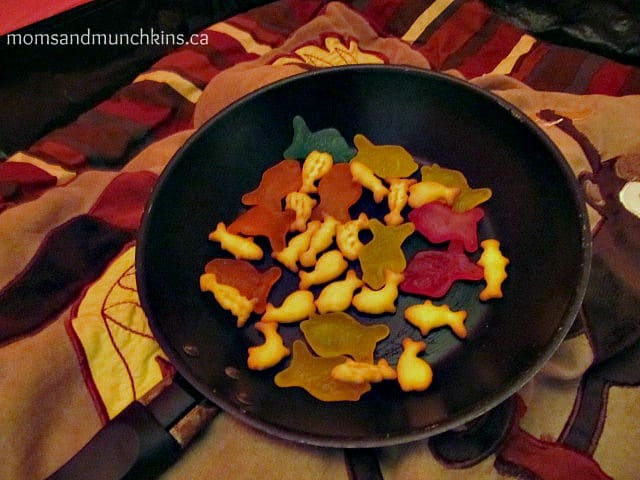 Camping Indoors Food