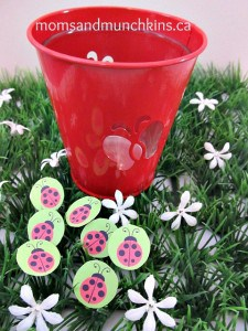 ladybug-birthday-activity