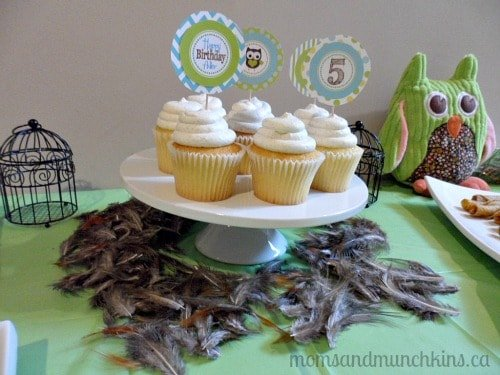 Owl Birthday Party Cupcakes