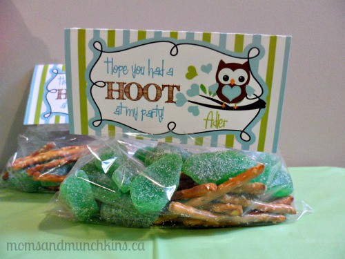Owl Birthday Party Favor Bags