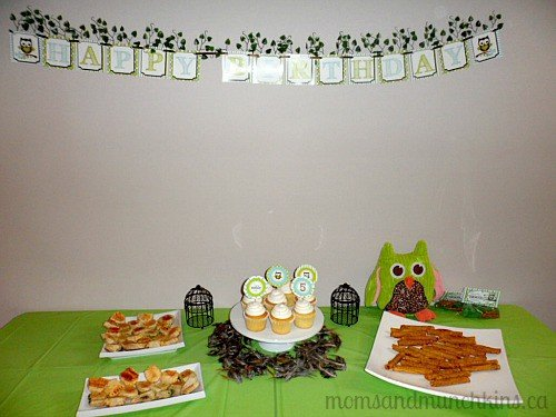 Owl Birthday Party Overview