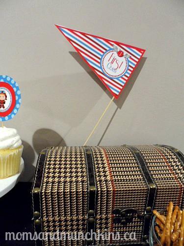 Aviation Birthday Decor Luggage