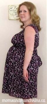 Sears Baby Registry - Pregnancy