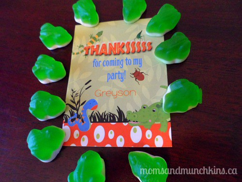 Swamp Party Favors