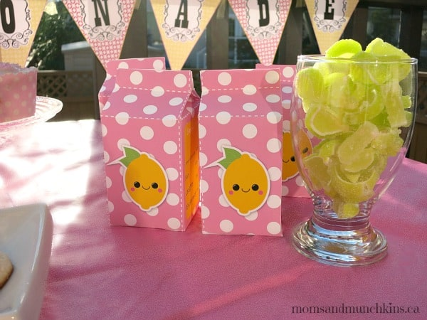 Pink Lemonade Recipes
