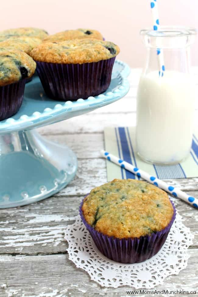 Yogurt Muffins (Can Mix With A Variety of Fruit) Moms & Munchkins