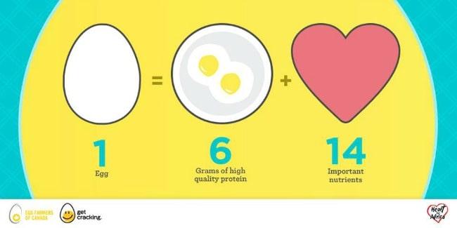 Canadian Eggs