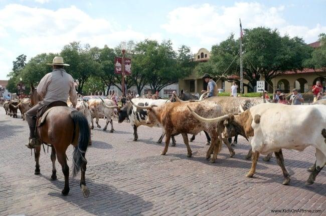 Texas Family Travel