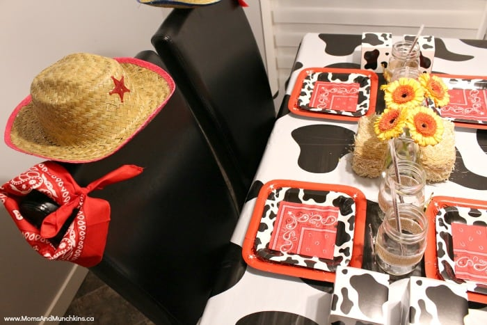 Cowboy & Cowgirl Party