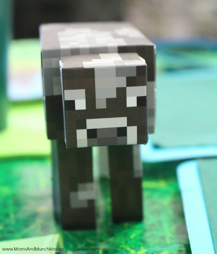 Minecraft Party Supplies