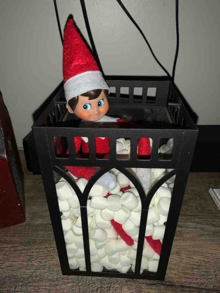 Elf with marshmallows in funny box