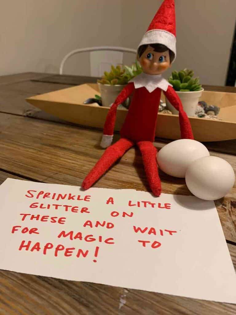 elf on the shelf surprise